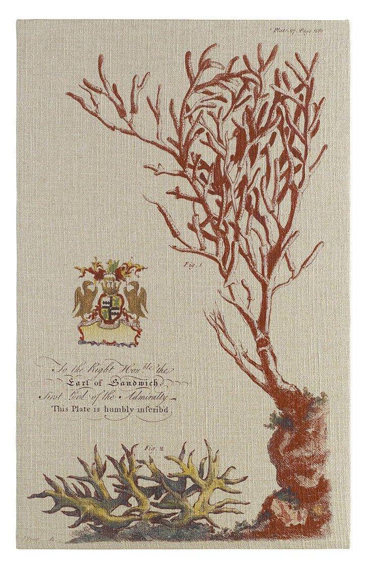 Vintage Coral Tapestry, 32 x 52