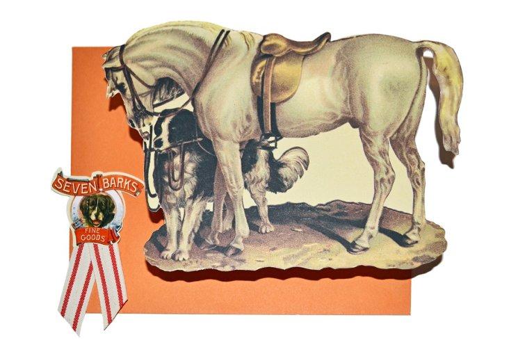 10 Correspondence Cards, Equine
