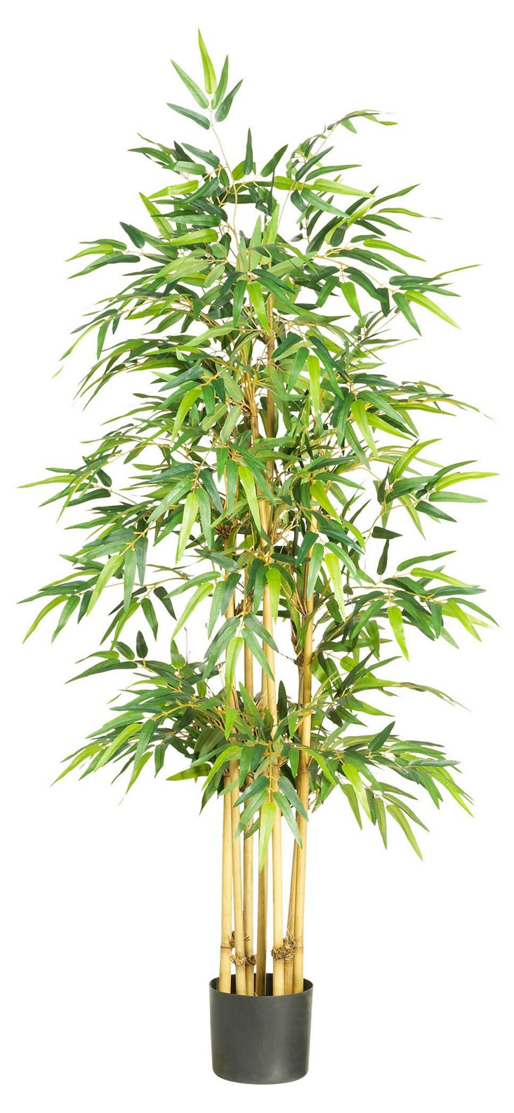 5' Bamboo Tree, Faux