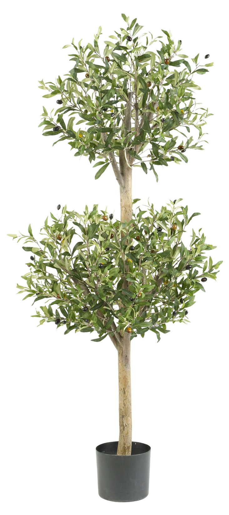 """54"""" Olive Topiary, Faux"""