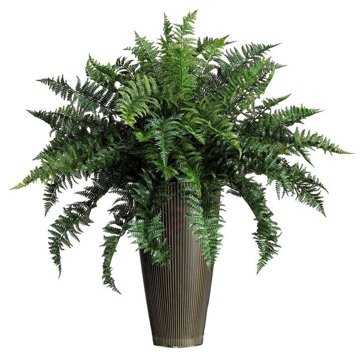 3' Ruffle Fern in Vase