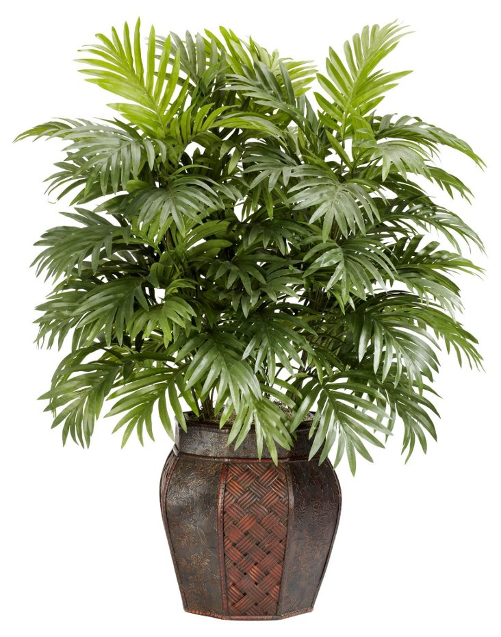 3' Areca in Vase, Faux