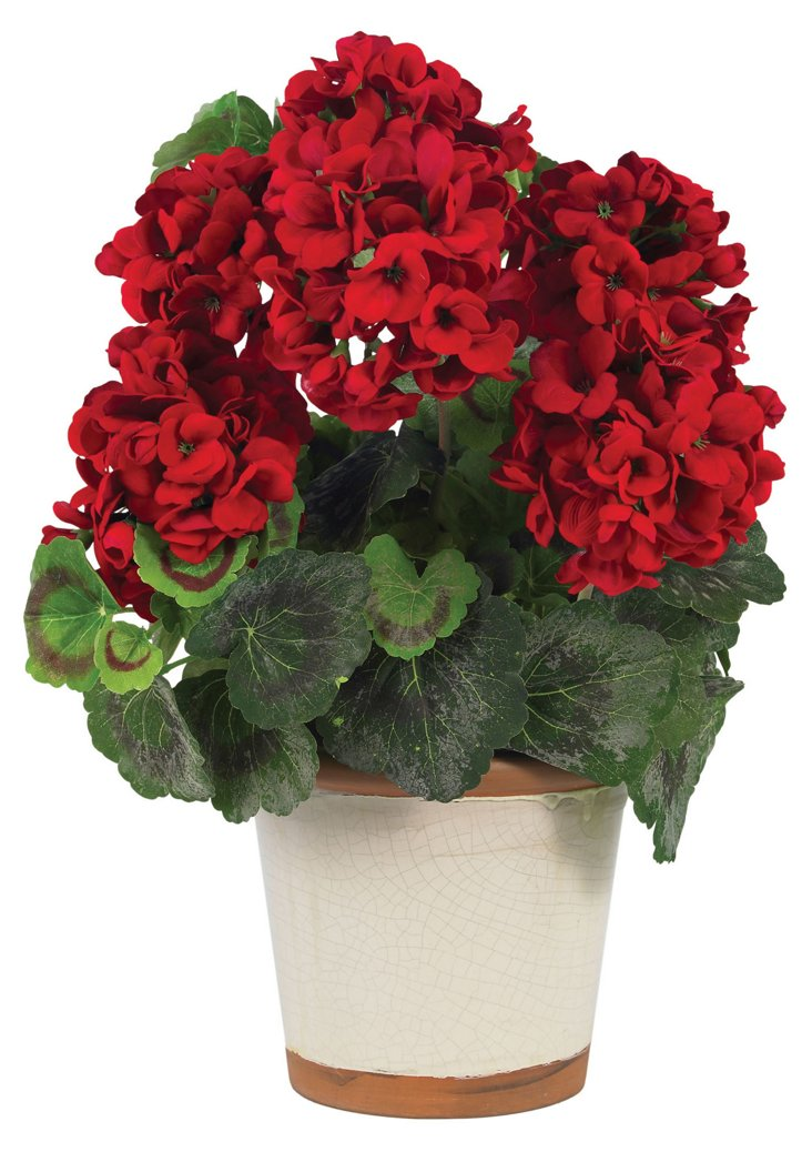 """17"""" Geranium in Vase, Red"""