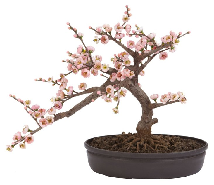 "15"" Cherry Blossom Bonsai, Faux"