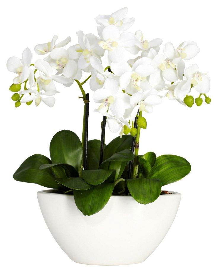 "16"" Triple Mini Orchid in Planter, Faux"