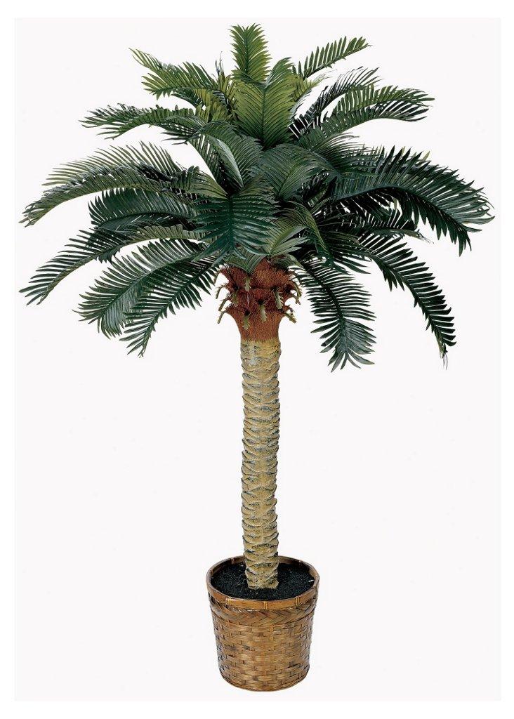 4' Palm Tree