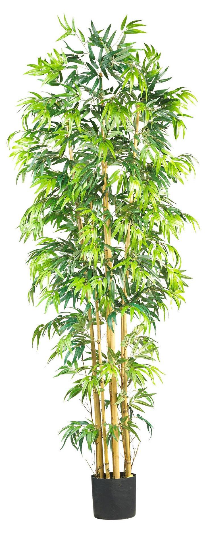 7' Bambusa Bamboo Tree, Faux