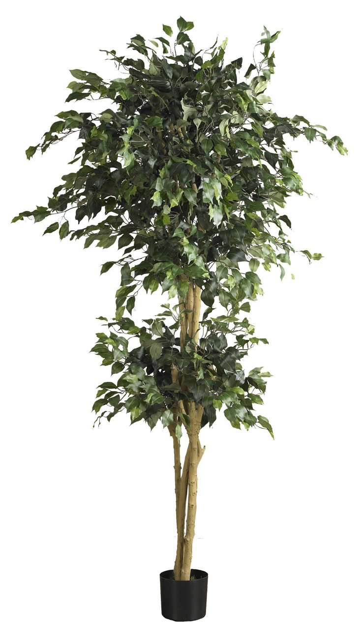 6' Double Ball Ficus Tree, Faux