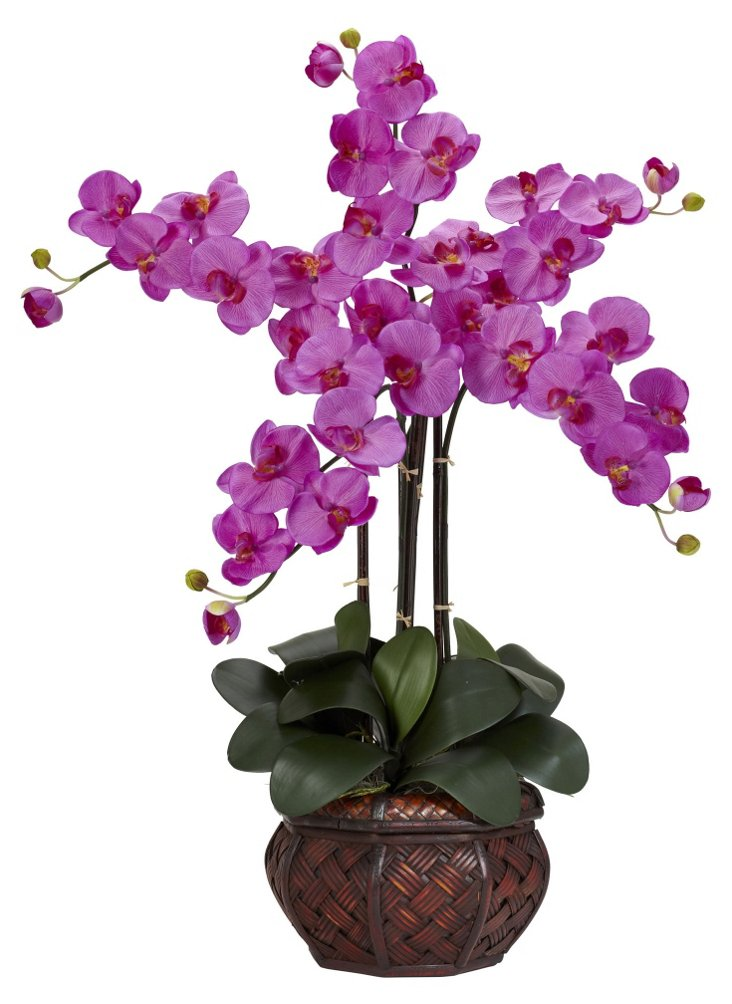 "31"" Orchid in Leather Planter, Faux"