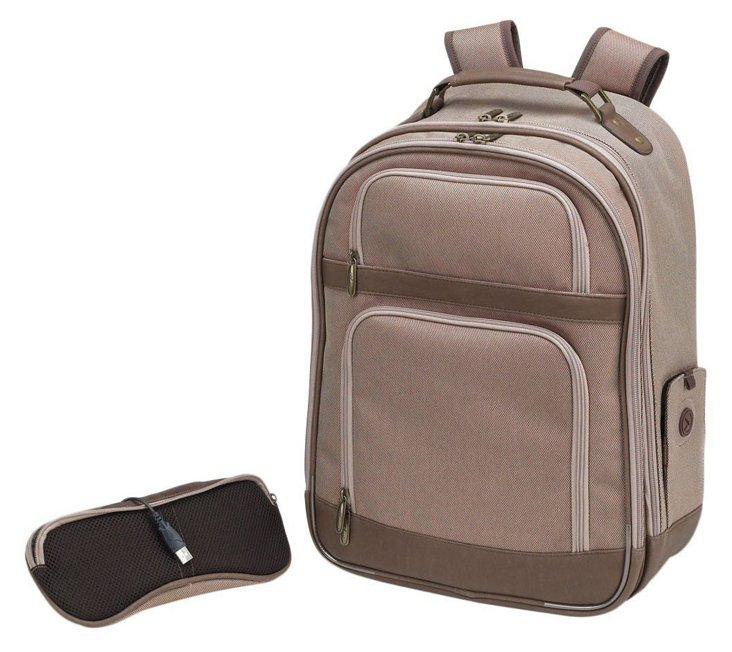 Computer Backpack, Brown