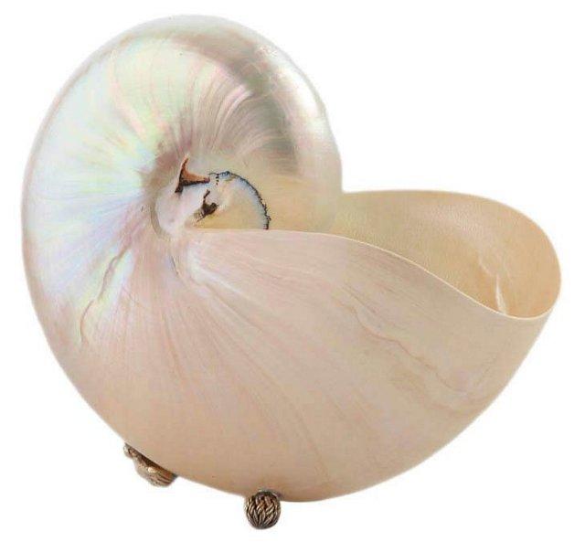 "8"" Nautilus w/ Sterling Silver, White"
