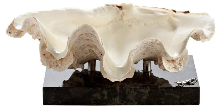 "12"" Ruffled Clam on Marble & SS Base"