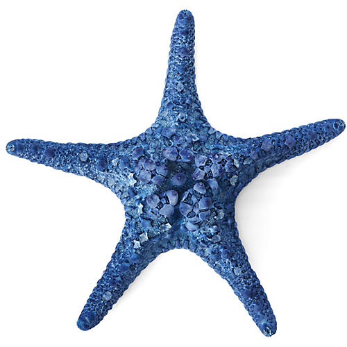 Knobby Starfish, Blue