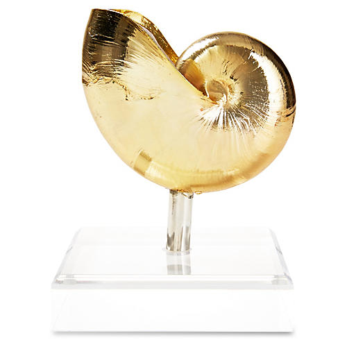 Gold-Plated Nautilus on Sterling Post