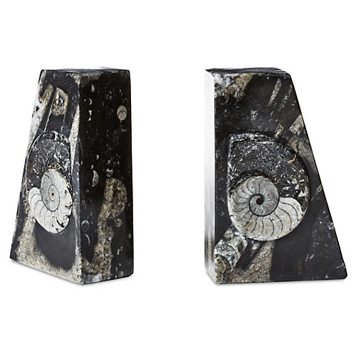 S/2 Ammonite Square Bookends