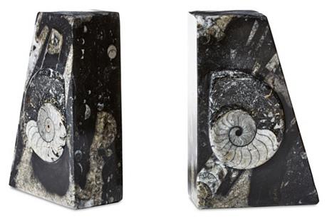 S/2 Ammonite Square Bookends