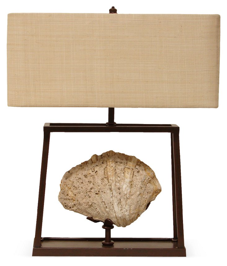 Fossil Shell Lamp