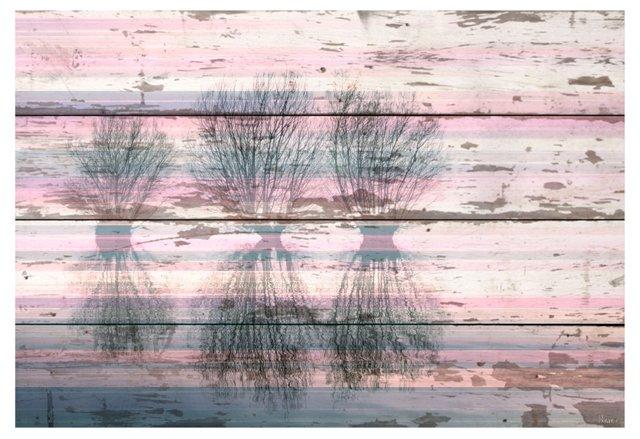 Three Trees, Reclaimed Barn Wood