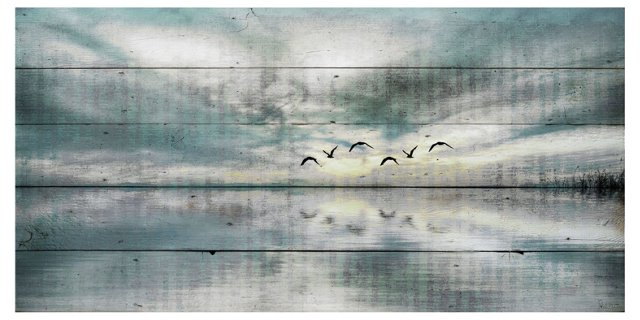 Birds Skylight (Reclaimed Wood)