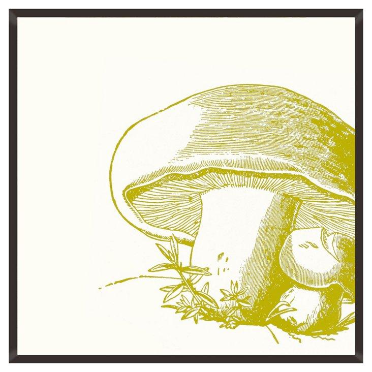Mushroom Print I
