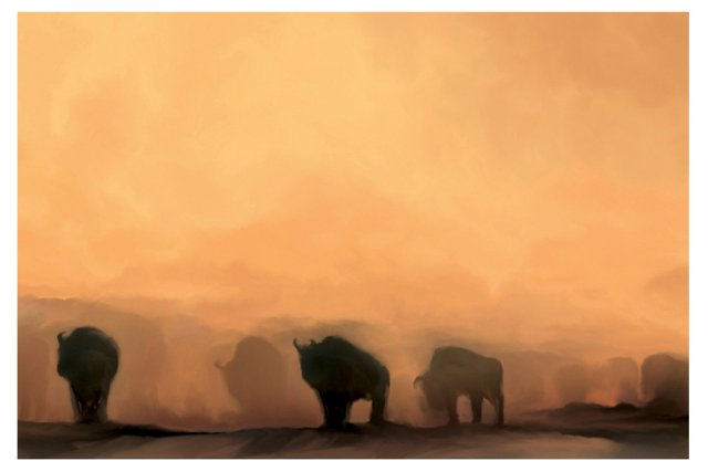 Cristi Benavides, Bison at Sunset