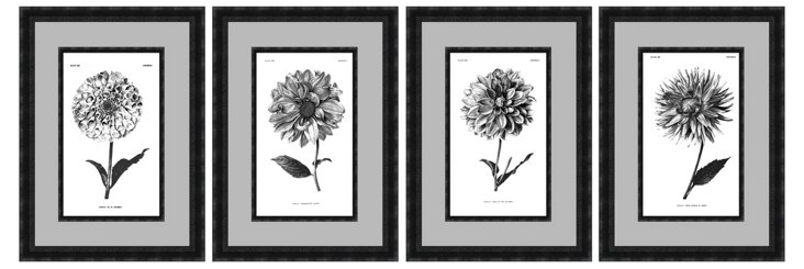 Difonzo, Black Botanical Set of Four