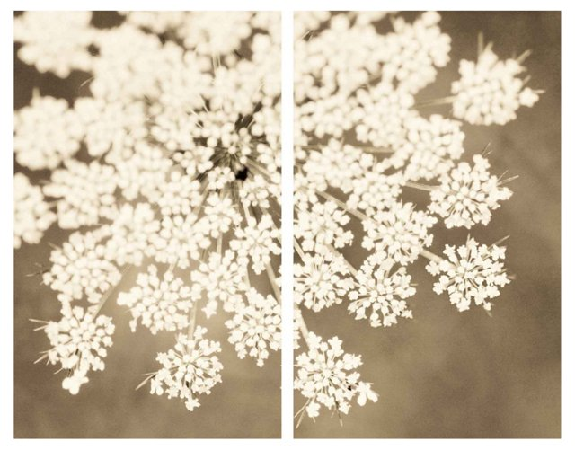 White Floral Burst Diptych Canvas