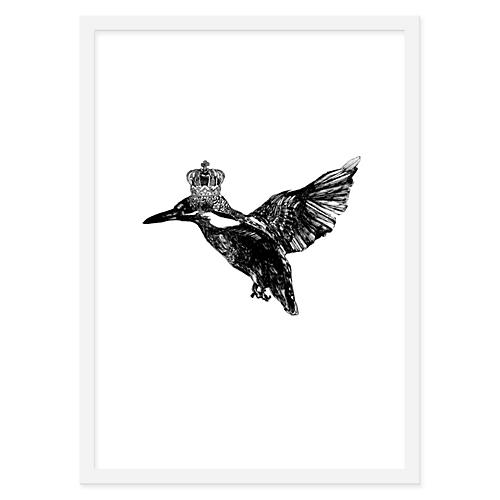 Jaybird Illustration, King Fisher