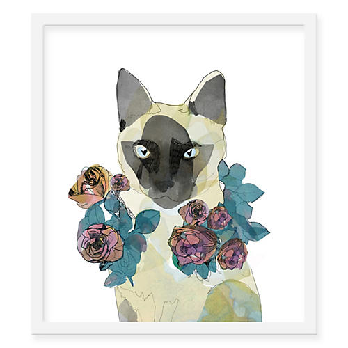 Jaybird Illustration, Cat