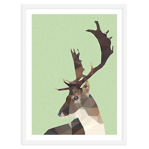 Deer, Studio Cockatoo