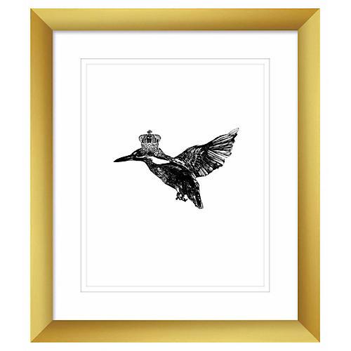 Kingfisher, Jaybird Illustration