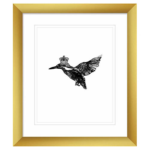 Jaybird Illustration, Kingfisher