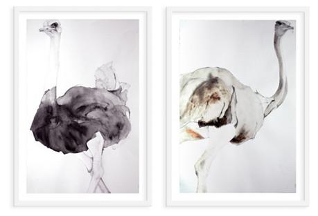 Heather Lancaster, Ostrich Pair