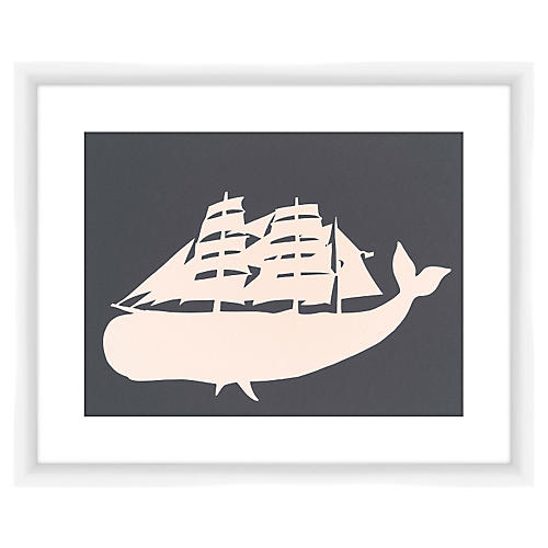 Sail Whale, Rankin Willard