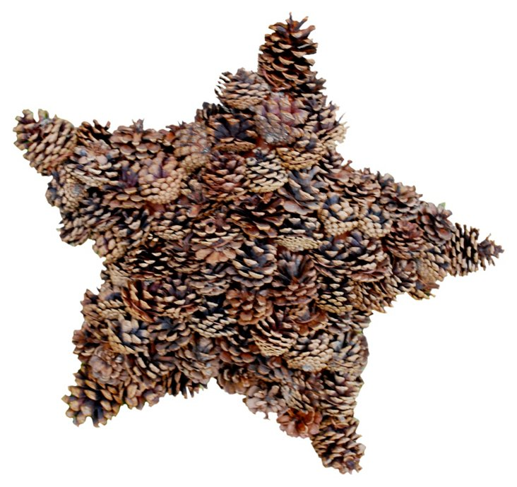 Big Star in Pinecone