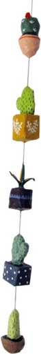 Succulent Strand w/ Flowering Cactus