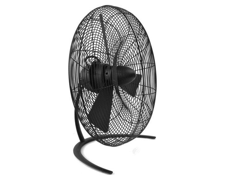 Charly Fan, Small
