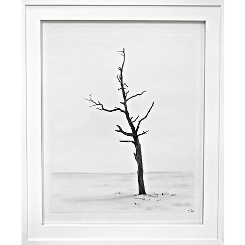 Beach Tree, Richard Bowers