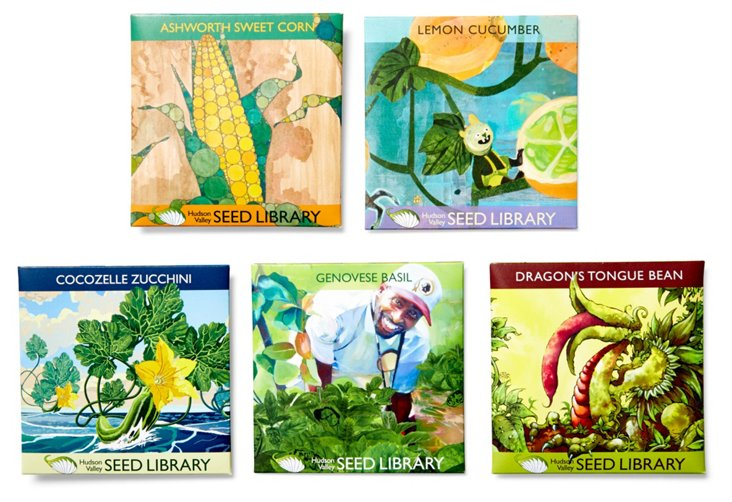 Asst. of 5 Kitchen Summer Seed Packets