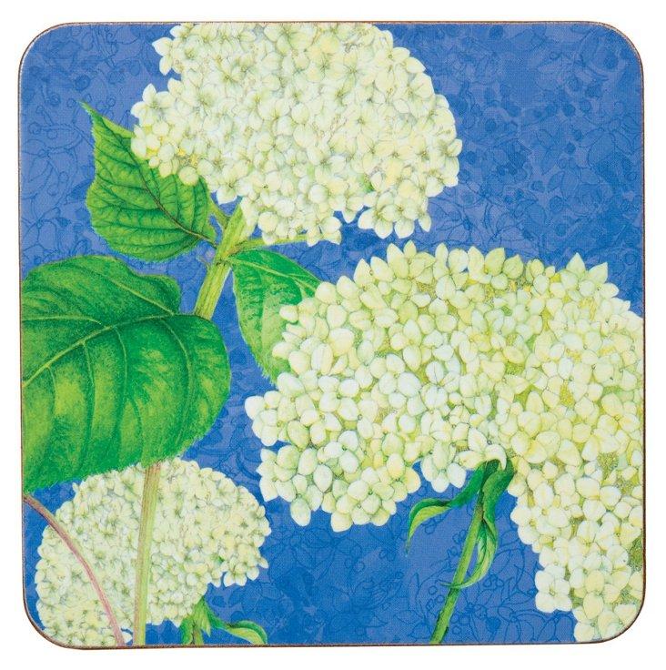 S/8 Coasters, White Hydrangea