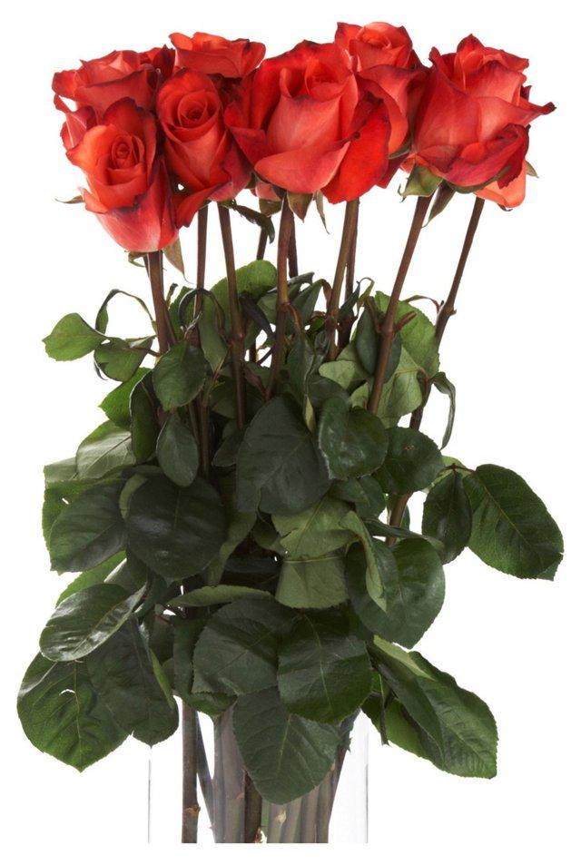 25 Premium Long-Stem Roses, Orange/Red