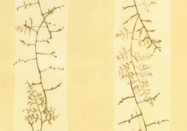 Twig Fern, Aloe, 30 Yds