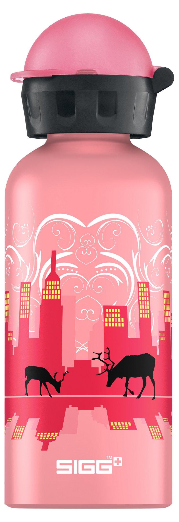 Skyline Bottle, Pink