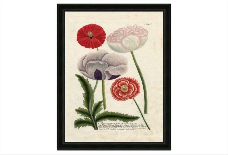 Vintage Floral 2, Large