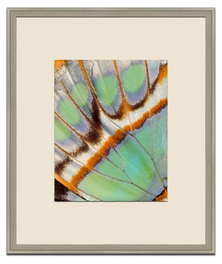 Jamie Drake, Green Butterfly Wing I