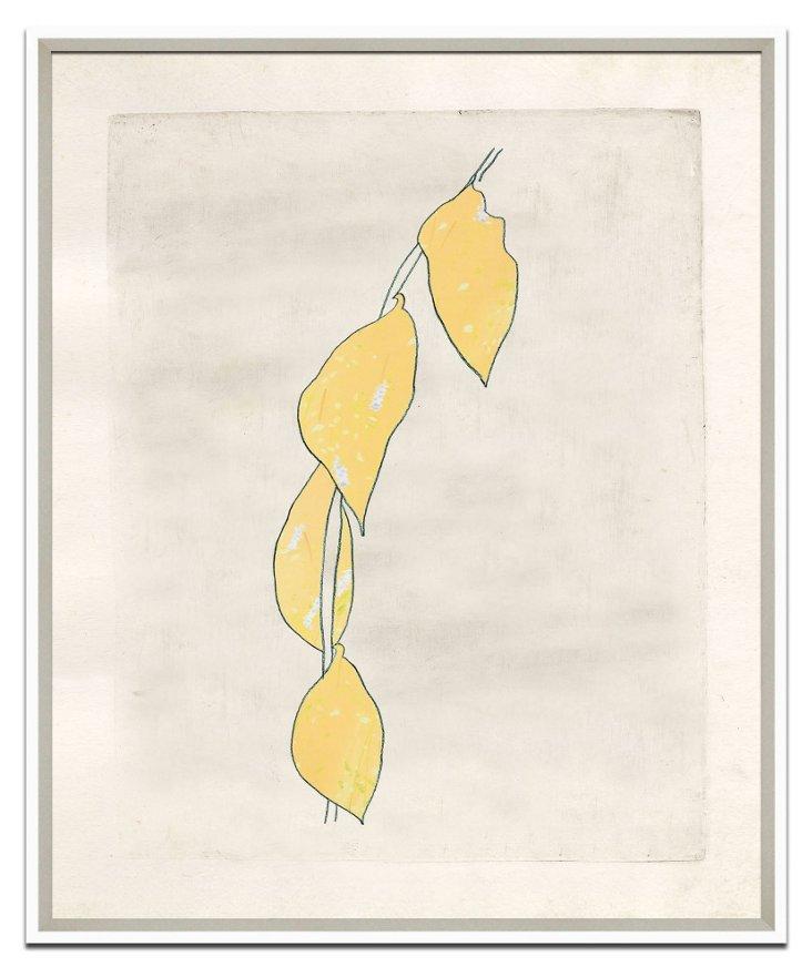 Richard Mishaan, MoMa Series II
