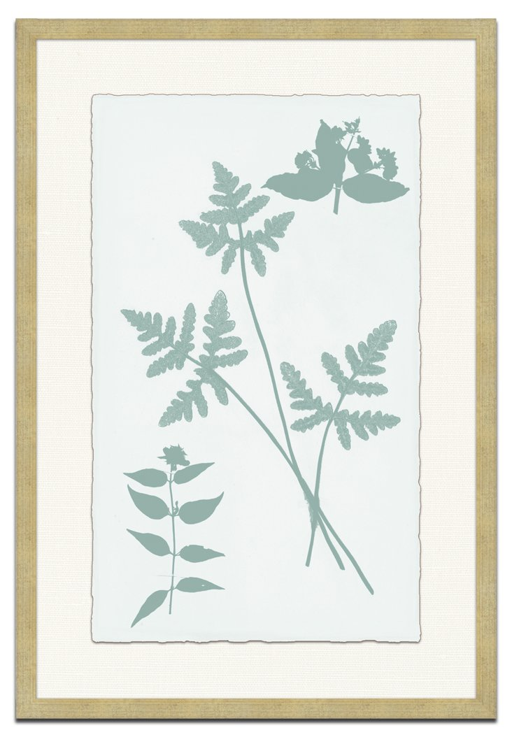 Pressed Flora Silhouettes II Framed Print