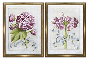 Narcissus & Rosa Sinensis Diptych