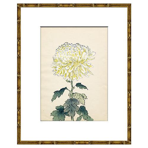 Asian Flower IV