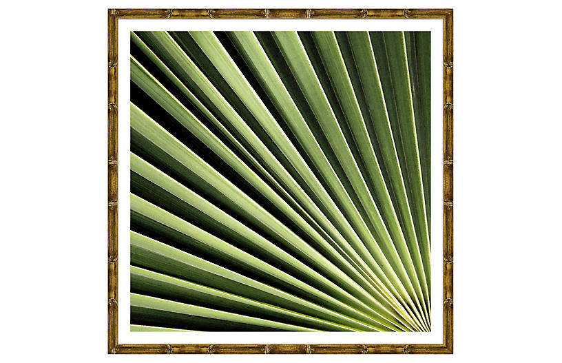 Detail of Palms I